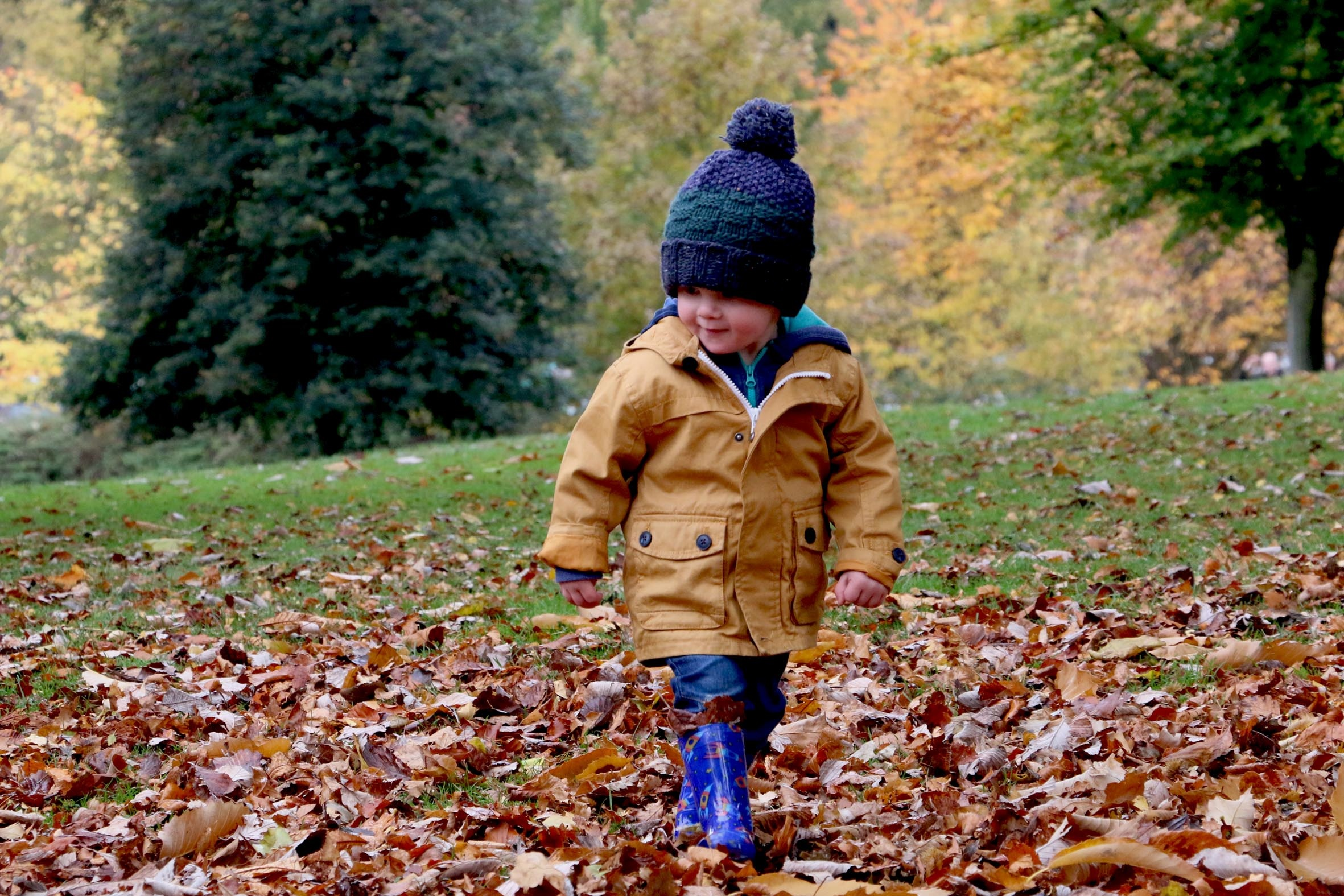 child and leaves